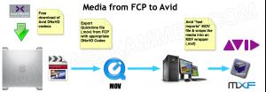 Media from FCP to Avid