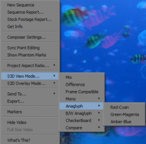 Viewing options of stereoscopic footage in Media Composer 6
